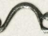 fibulaferiole